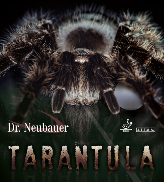dr_neubauer_tarantula_1