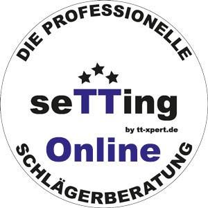 seTTing_online_Logo_1
